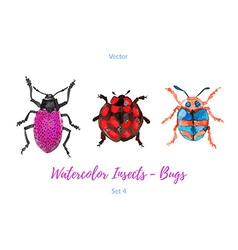 Set of hand painted watercolorbugs vector