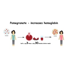 Anemia the reduced amount of red blood cells vector