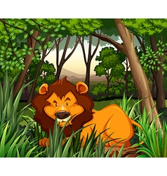 Lion living in the dark forest vector