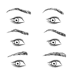 Set of different form eyebrows vector image