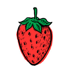 Hand drawn strawberry isolated on white vector