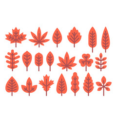 Flat design autumn leaf shapes set vector
