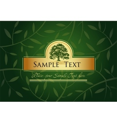 Green Greeting card vector image vector image