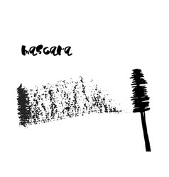 mascara brush and with messy stroke vector image vector image