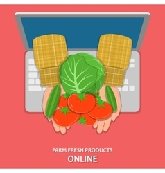 Online farm products flat concept vector