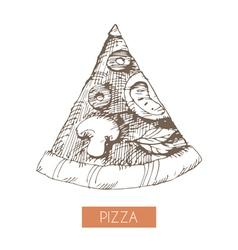 Pizza slice vector