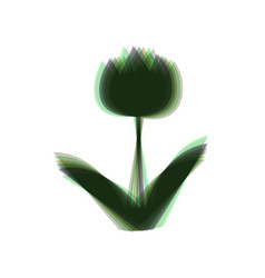 tulip sign colorful icon shaked with vector image vector image