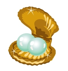 Two shiny pearls in a gold box of shells vector