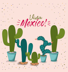 viva mexico colorful poster with cactus plants vector image