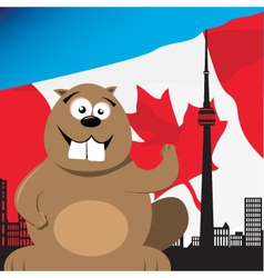 Canadian beaver vector