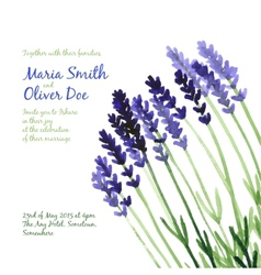 background with violet watercolor lavender vector image vector image