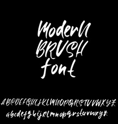 hand drawn elegant calligraphy font modern brush vector image vector image