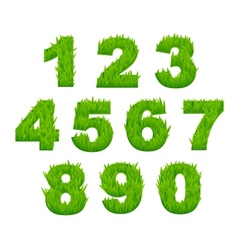 Grass numbers and digits vector