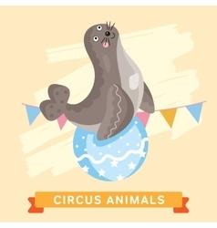 Circus seals animal series vector