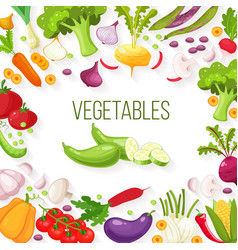 frame of fresh vegetables for your design vector image vector image