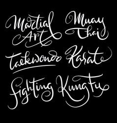 martial art sport hand written typography vector image