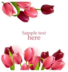 Floral frame with tulips vector