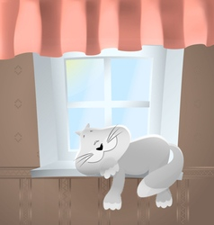 Animals Cat in front of window vector image vector image