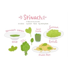 cartoon hand drawn spinach food set vector image vector image