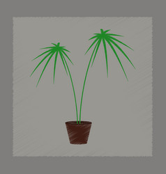 Flat shading style plant cyperus vector