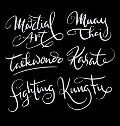 Martial art sport hand written typography vector