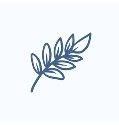 Palm branch sketch icon vector