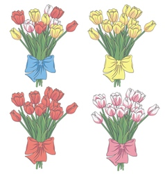 set of tulip flowers vector image vector image