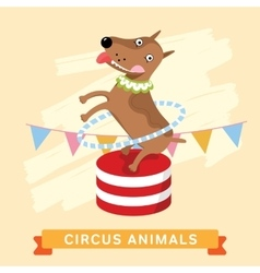 Circus dog animal series vector