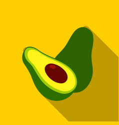 avocado icon flat singe fruit icon vector image