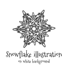 Snowflake icon on white vector image