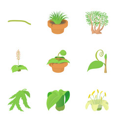 different plants icons set cartoon style vector image vector image