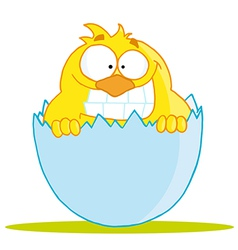 little Chick Peeking Out Of An Egg Shell vector image vector image