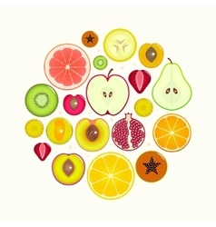 Fruit slices round vector