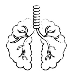 Abstract lungs icon image vector
