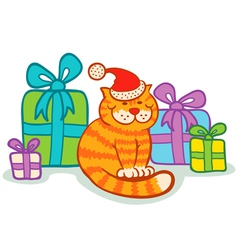 Cat gifts vector image vector image