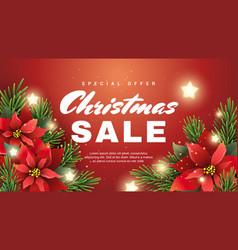 christmas sale banner with christmas star flower vector image