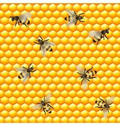Honey bee seamless pattern vector image vector image