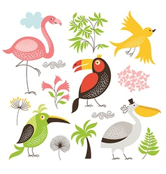 set of an exotic birds vector image vector image