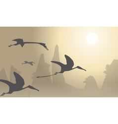 Silhouette of pterodactyl beautiful landscape vector