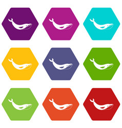 whale icon set color hexahedron vector image
