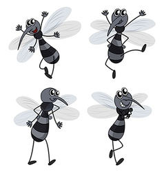 Four mosquitoes vector