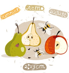 Apples and pears summer vector