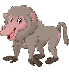 Cartoon funny baboon isolated on white background vector image