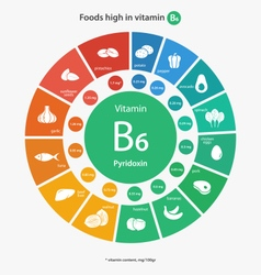 Foods high in vitamin b6 vector
