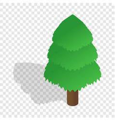 Spruce isometric icon vector