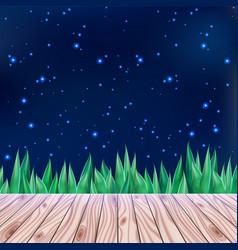 starry summer sky and wooden bridge vector image