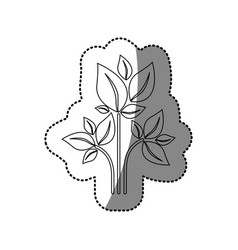 Sticker silhouette of plant with branch and leafs vector