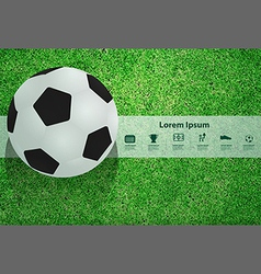 Soccer ball on the field design template vector