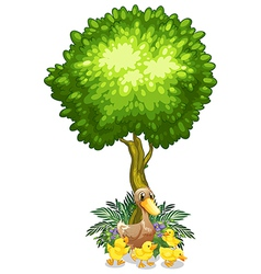 A duck and her ducklings under the tree vector image