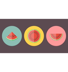 Watermelon icon collection vector